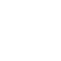 Bridge of Life